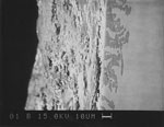Fig. 21. Erfurt Cathedral sVI 6a. Electron-ray micro-analysis